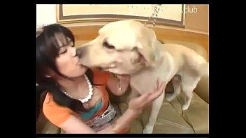 18+ แนวแปลก สาวAVลองเล่นเสียวกับหมาเนย เลียร่องหีเสียวกว่าผัว เงี่ยนมากจนติดใจ