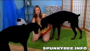 หนังโป้หื่น ฝรั่งเย็ดหมา XXX ลองของแปลกแบบถึงใจ จับหมามาเย้ดกับฝรั่ง แทงหีด้วยท่าหมาของจริง